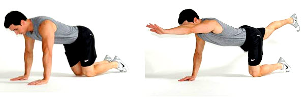 Antoniotti Chiropractic Blog- Spinal Stability Exercises